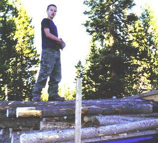 Tom_Firewood
